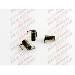Torsion spring MTE6100001