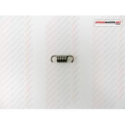 Variator clutch shoe spring M48MC1110019